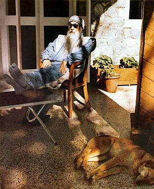 osho resting with feet on table